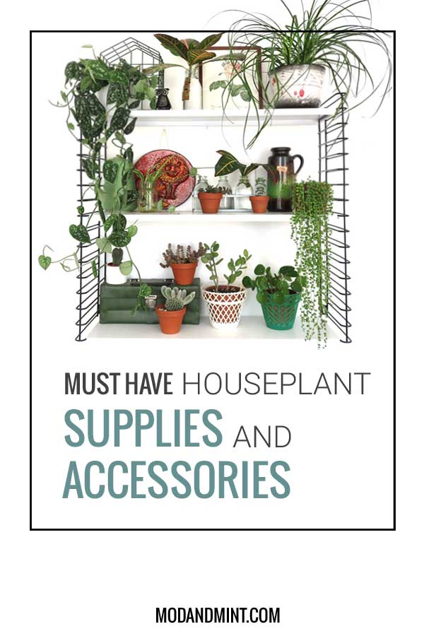 Must Have Houseplant Supplies and Accessories