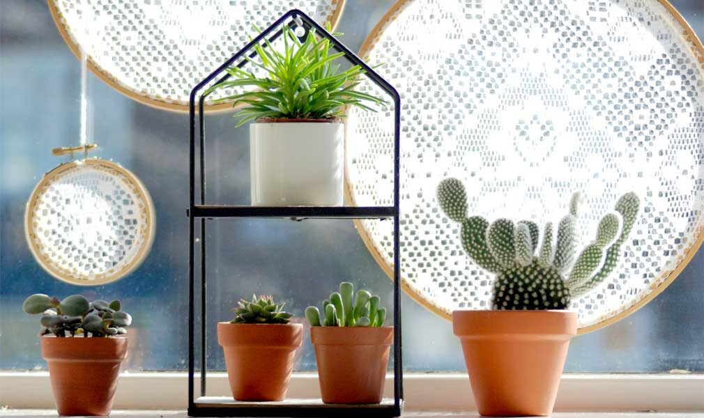 DIY embroidery hoop window sun diffusers for your plants