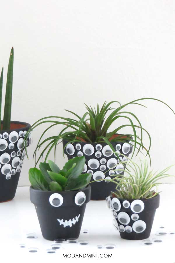 Spooky DIY Halloween Googly Eye Planter Pots