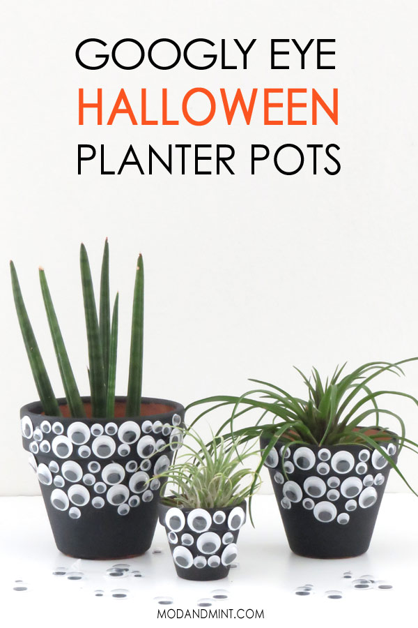 Easy DIY Halloween Googly Eye Planter Pots